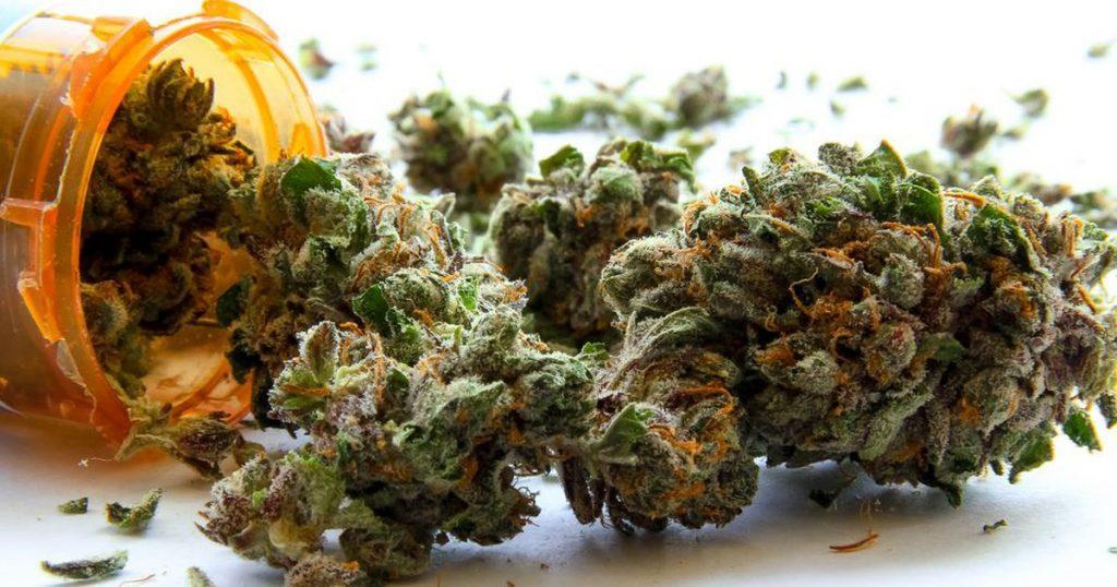cannabis photo